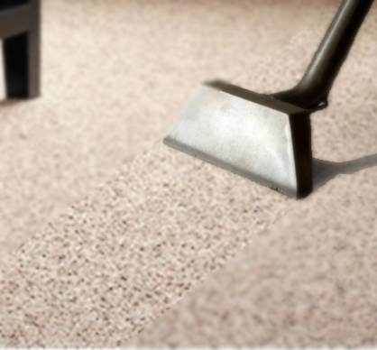 Carpet Cleaning Guild And Care